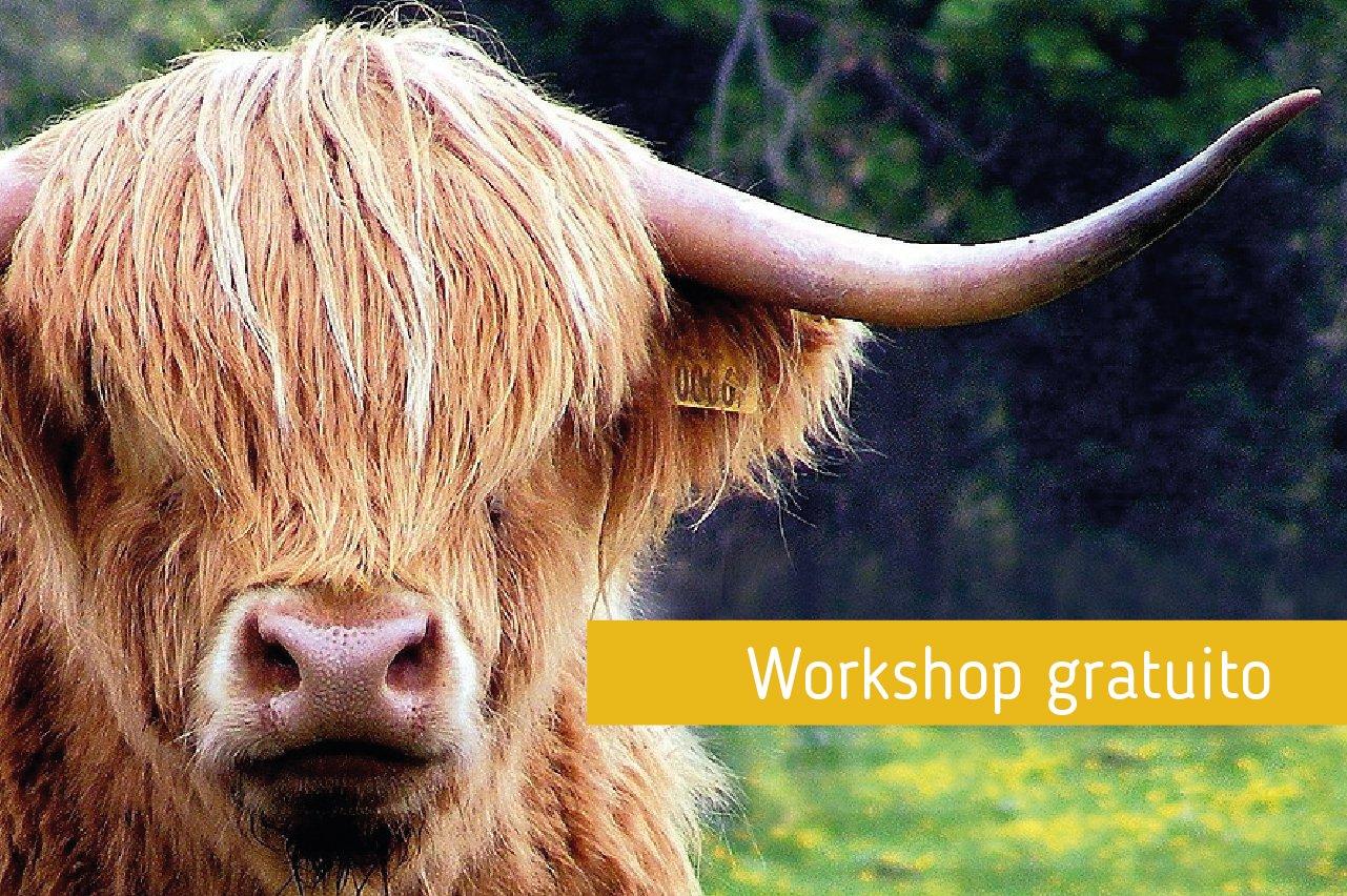 Sicuro di vederci chiaro? Workshop gratuiti – aprile/maggio 2016